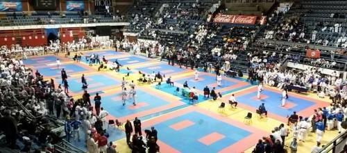 "Međunarodni karate turnir ""TROFEJ BEOGRADA 2014"""