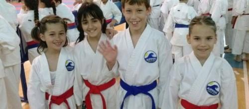 "Karate turnir ""Roda Cup 2014"""
